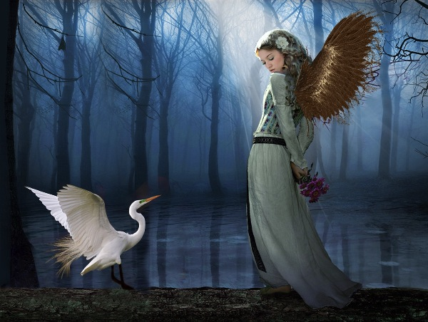 argentina_jose-luis-campetella-efiapb-sfaf_golden-wings_digital-experimental_psa-ribbon