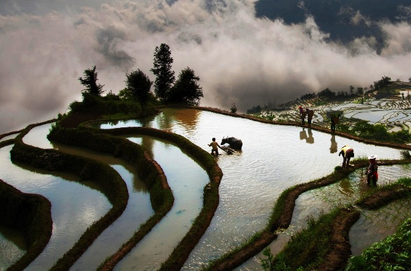 taiwan_yu-pei-huang_farming_digital-phototravel_highly-commended