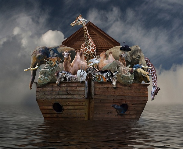 united-states-of-america_jim-eyrich_noahs-ark_digital-experimental_commended