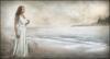 The Bay of Dreams.jpg