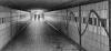 Underpass 2.jpg