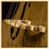 Jazz 03.jpg