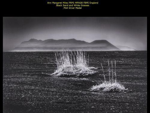 Ann Margaret Miles FRPS MPAGB FBPE_England_Black Sand and White Grasses_PSA Silver Medal.jpg