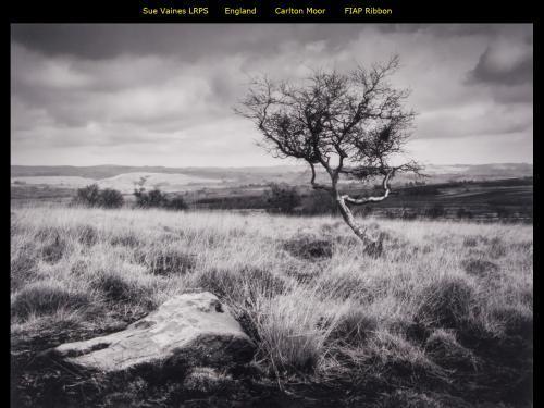 Sue Vaines LRPS_England_Carlton Moor_FIAP Ribbon.jpg