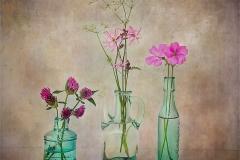 Christine-Tidman-AWPF-EFIAP-CPAGB-BPE1_Gwynfa-Camera-Club_Hedgerow-Flowers
