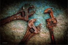 Julie-Morgan-AWPF_Abergavenny-Camera-Club_Warring-Wrenches