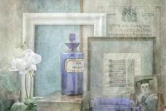 Wendy-Irwin-CPAGB-ARPS_Blythe-Bridge-Camera-Club_Blue-Bottles