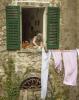 3 Washing Lady.jpg