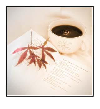 05 Cup Book Leaves.jpg