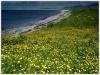 09 Hebridean Coastline.jpg