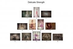 1.-Hanging-Plan-Delicate-Strength-Chris-Netton-