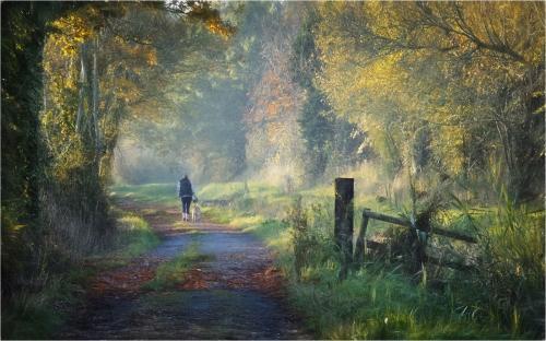 201-Autumn-Walk.jpg