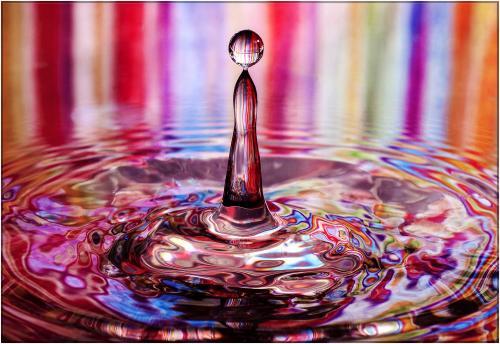 239 A Splash of Colour.jpg